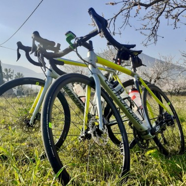 Bike rental options include Di2 carbon road bike options