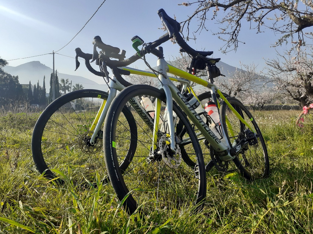 Murcia Road Bike Hire Carbon Di2